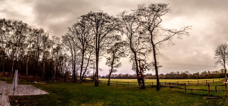 The Cedars (Air BnB) - Surrey, England